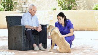 Terapia asistida con animales en L´Onada Serveis.