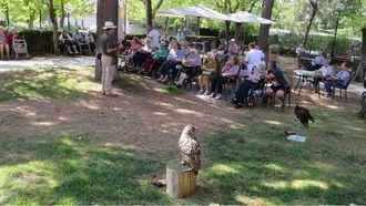 Terapia con aves rapaces en ORPEA Torrelodones.