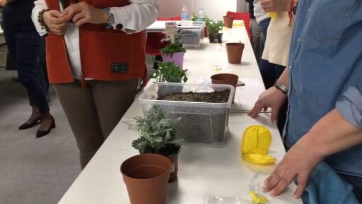 Seminario Inforesidencias.com: Actividades al aire libre en residencias de mayores - Usando el jardín de los sentidos