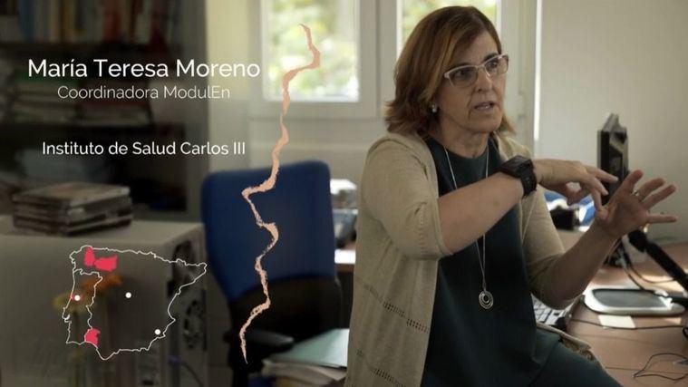 María Teresa Moreno Casbas, directora de Investén-Instituto de Salud Carlos III.