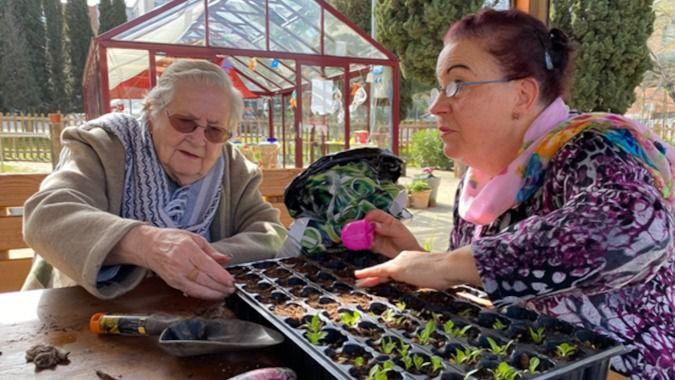 Terapias y actividades en el jardín para personas mayores