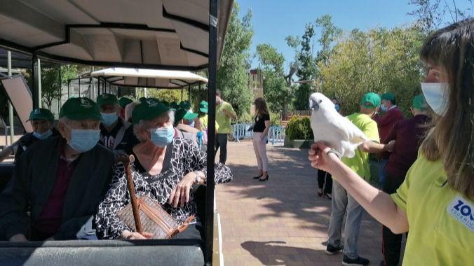 Residentes del Grupo Casaverde hacen su primera salida grupal en pandemia al Zoo de Madrid