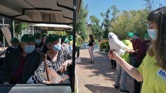 Residentes de centros del Grupo Casaverde visitan el Zoo de Madrid.