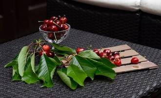 La cereza del Jerte, fuente de la eterna juventud