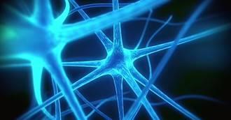 Creutzfeldt-Jakob, una demencia neurológica