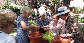 Sanitas Mayores incorpora la botánica artística a sus terapias