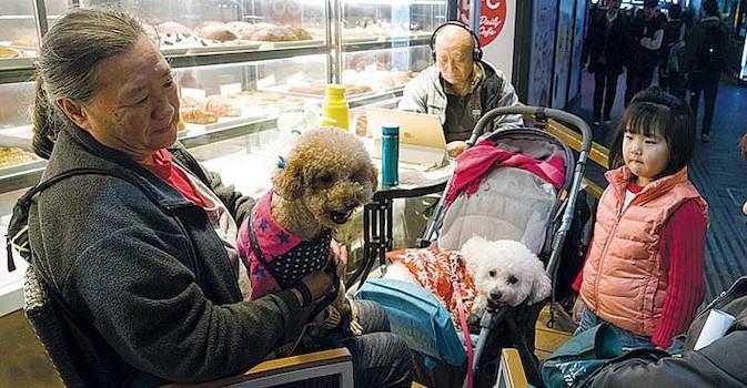 Mirando al exterior. Aumenta la esperanza de vida en Shanghai