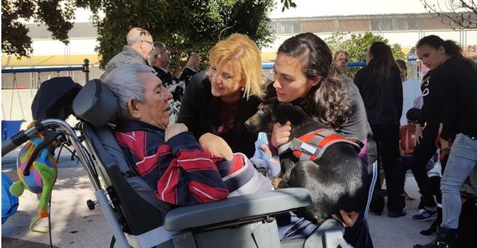 Terapias alternativas con animales para personas mayores en Murcia